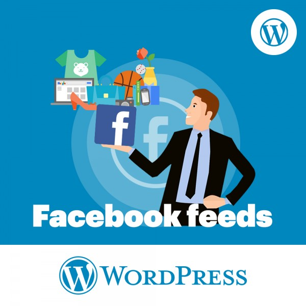 Facebook Feed WordPress