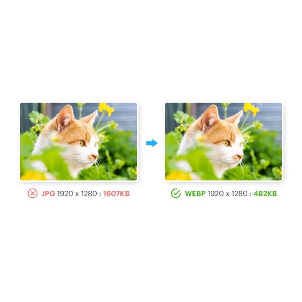 Images Convert: webp, jp2, lazy load, png & jpg compress for Opencart 1.5-3.x